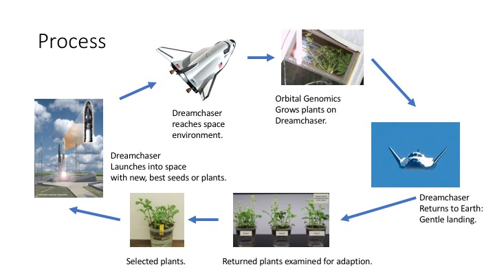 Loop where seeds are launched into space, plants returned to Earth, and successive generations launched.